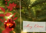 greeting-card-34