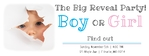 Gender Reveal Banner 96 x 36 Horizontal
