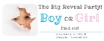 Gender Reveal Banner 60 x 24 Horizontal