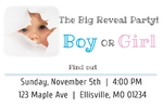 Gender Reveal Banner 36 x 24 Horizontal