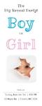 Gender Reveal Banner 24 x 60 Vertical