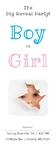Gender Reveal Banner 36 x 96 Vertical